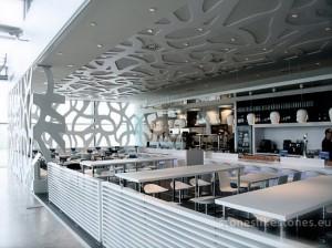 Duralmond_Celosia_Organica_04_50442_Airport_2_WZ
