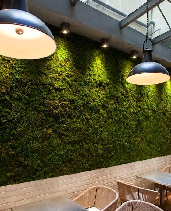 Pareti Vegetali Design In Luce